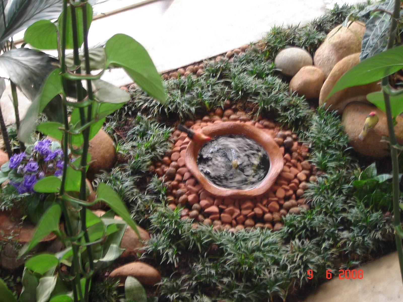 Perfil da planta orqu deas hist rias e plantas not veis for 5 jardins de lucie