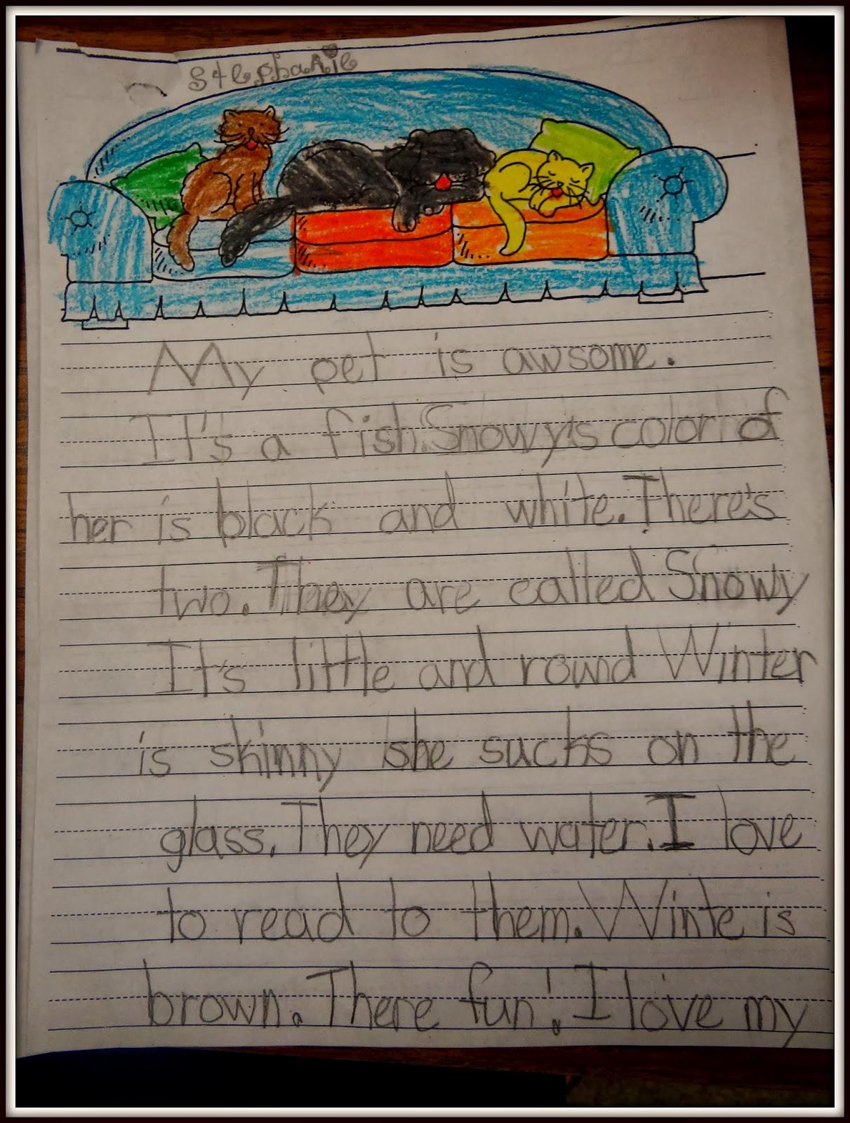 essay on rabbit animal in english
