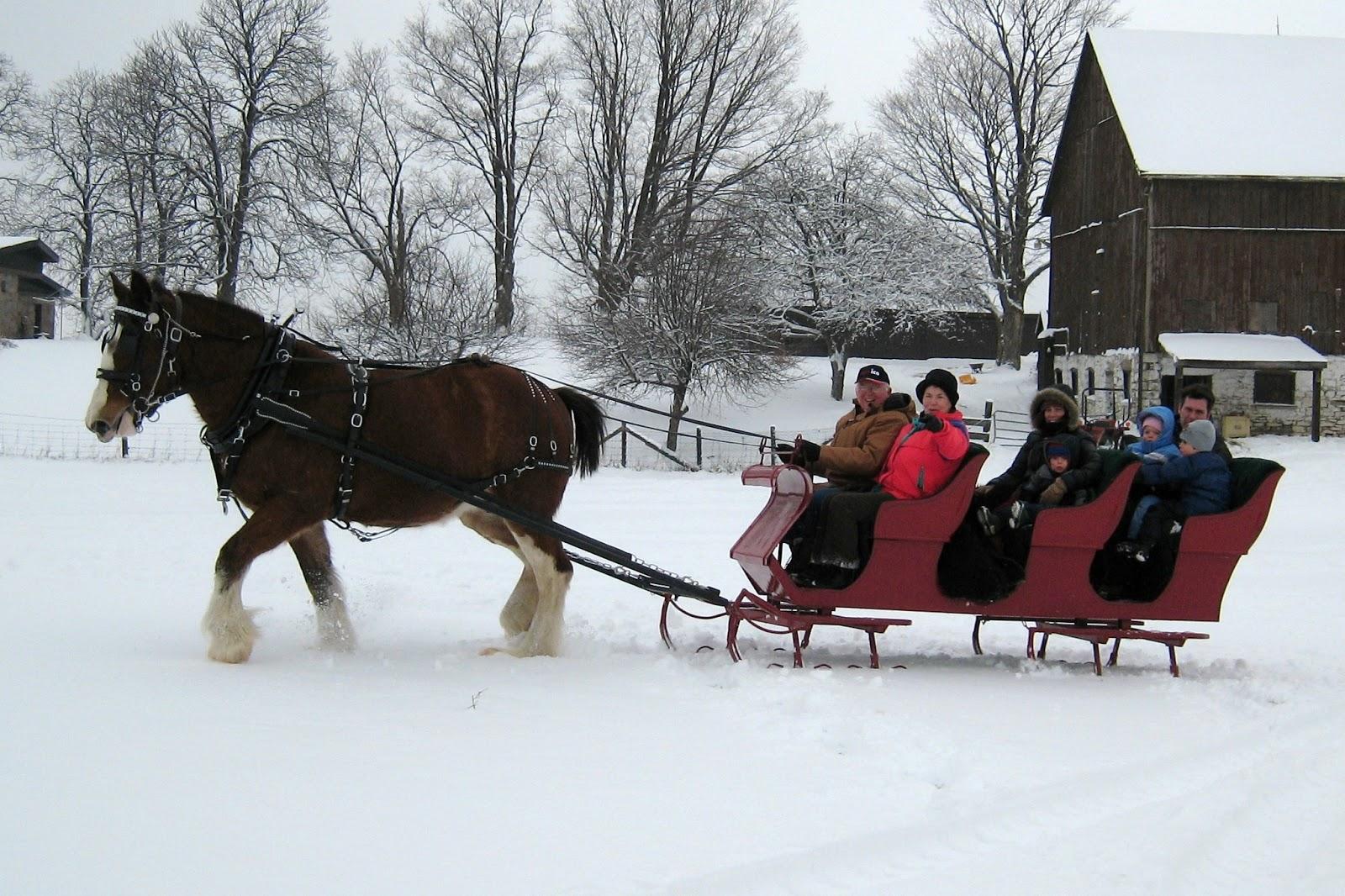 http://1.bp.blogspot.com/-S-Vk3FNp8Jg/UJD2S7vUyXI/AAAAAAAACtA/dbRw7w5lpuI/s1600/Copy+of+2008+Feb+2+Snow+@+CVF+edited+3.jpg