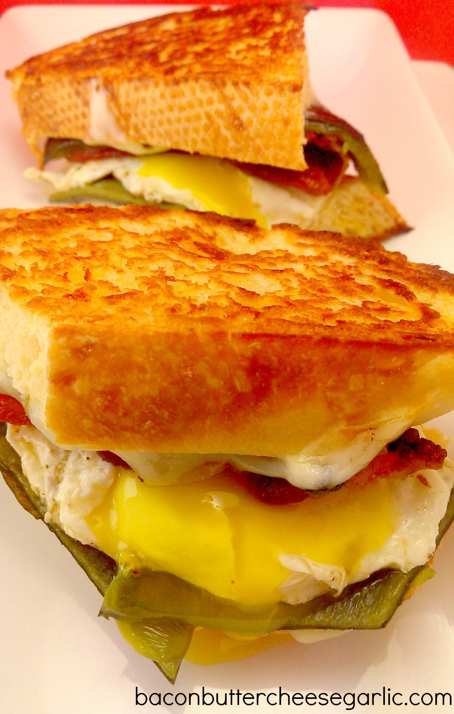 ... of the day roasted poblanos pepper jack cheese bacon and a fried egg