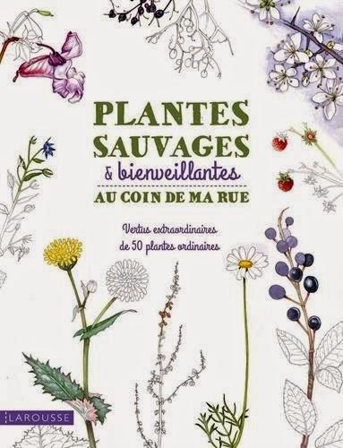 http://www.amazon.fr/Plantes-sauvages-coin-Adele-Nozedar/dp/2035898439