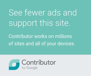Поддержи блог - рекламы будет меньше