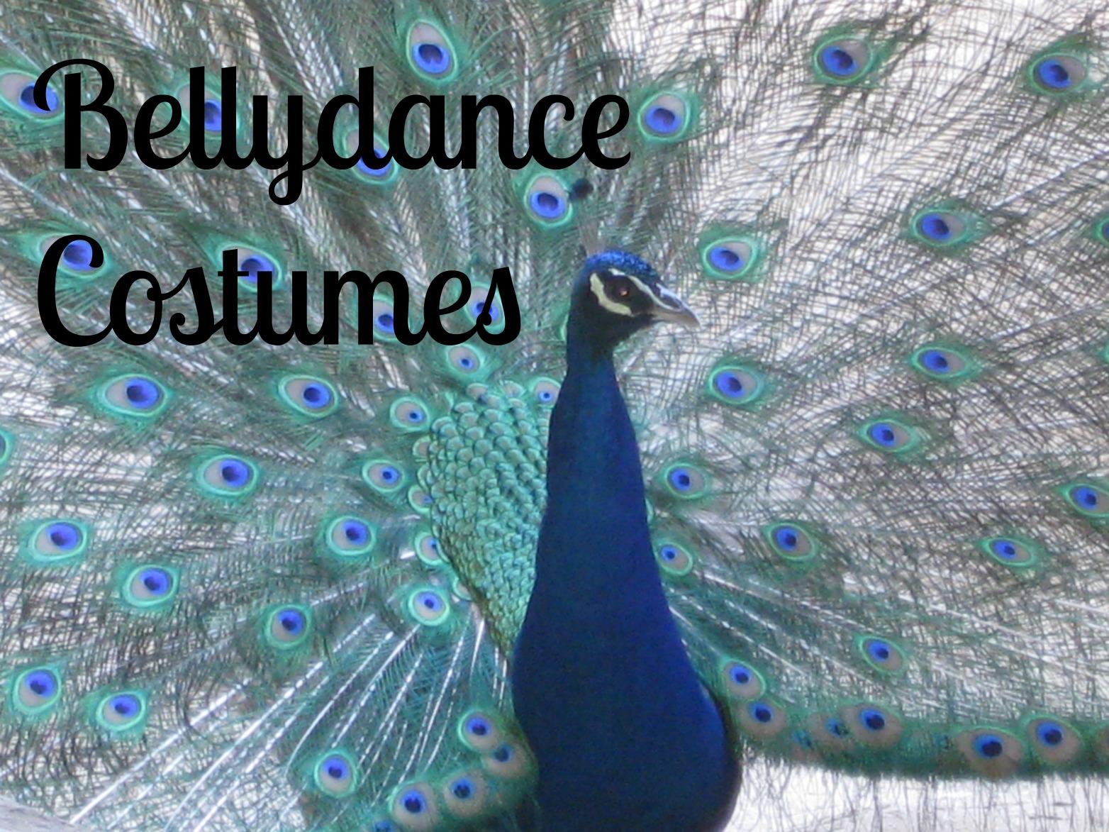DIY Bellydance Costumes