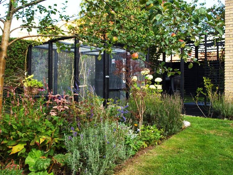Hjemmebygget hønsegård med sort træ