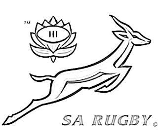 Springbok Logo Sketch