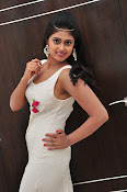 Meghasri new sizzling photo gallery-thumbnail-11