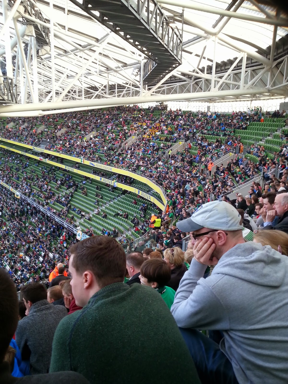 crowd at aviva stadium Ireland match paper doll blog