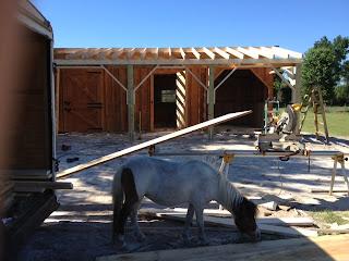 Buy Custom Horse Barn