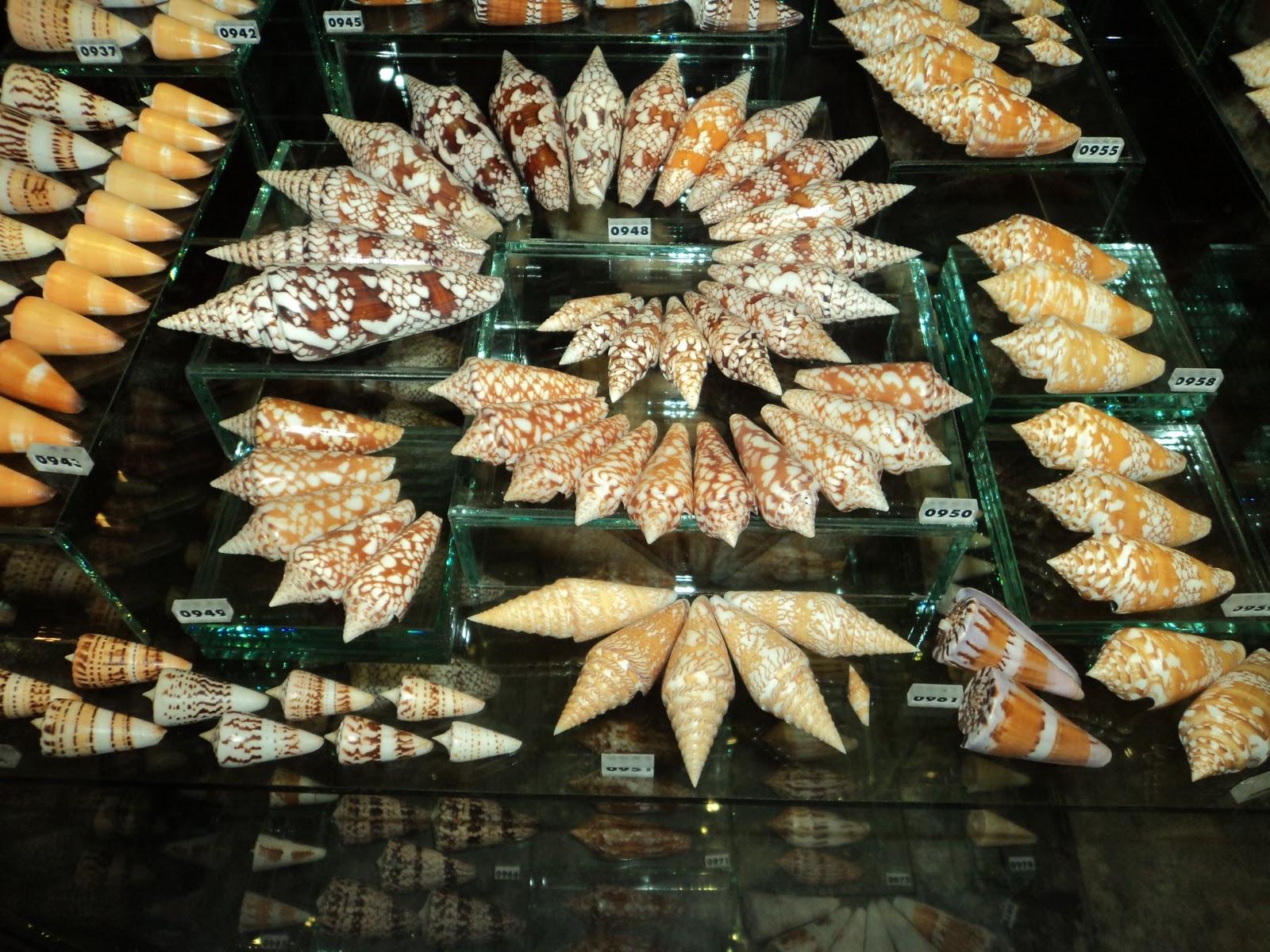 Musée de Patong à Phuket Thailande - Page 3 DSC00297