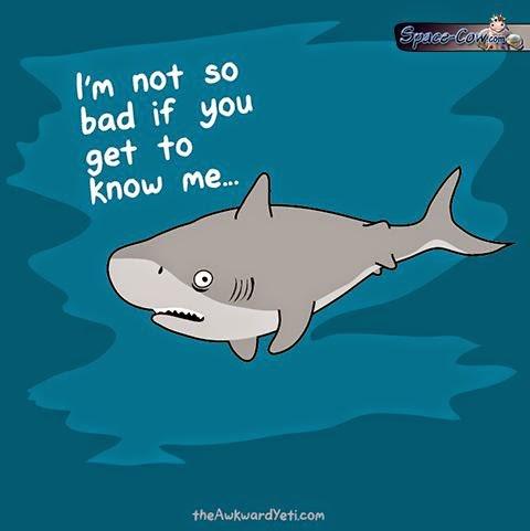 funny comics shark picture