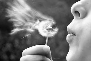 cfo 2012 o sonho acabou. Imagem mostra uma uma mulher soprando pétalas de flor