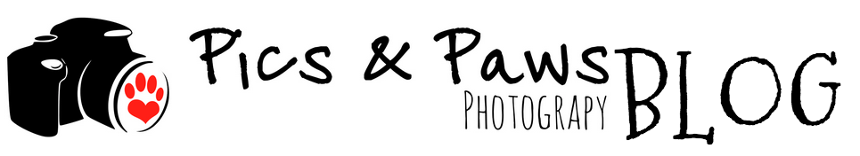 Pics and Paws Photography Blog