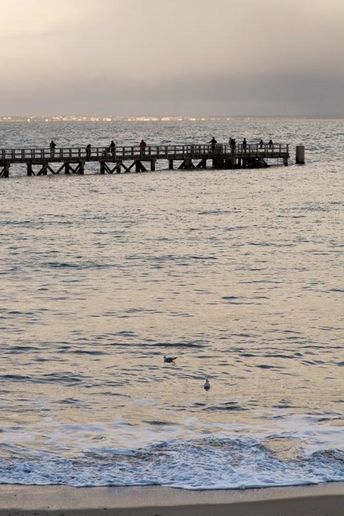 noirmoutier, ile de noirmoutier, mer, océan, plage, gois, marée haute, marée, plage des dames