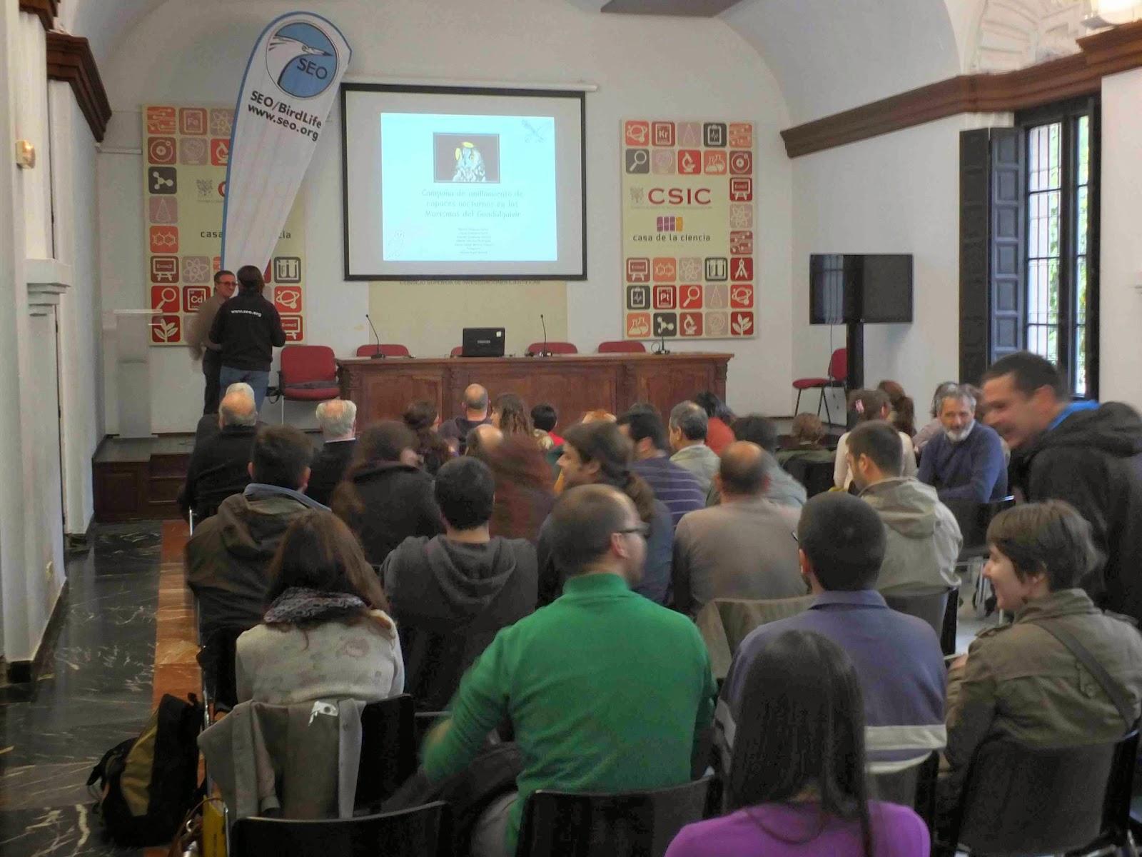 """Conferencia """"Campaña de anillamiento de rapaces nocturnas en las marismas del Guadalquivir"""". Por Manuel Vázquez Castro (EBD), en el ciclo Martes Ornitológicos que el Grupo Local SEO-Sevilla organiza en el museo Casa de la Ciencia de Sevilla"""