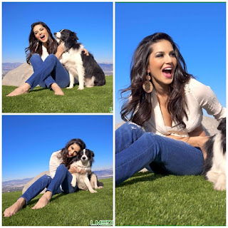 Sunny Leone With Puppies