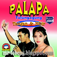 Palapa+live+in+Tulungagung.jpg