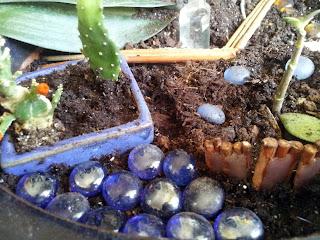 Galets ornementaux. Décoration en bois sec pour cacher les rebords de pots.