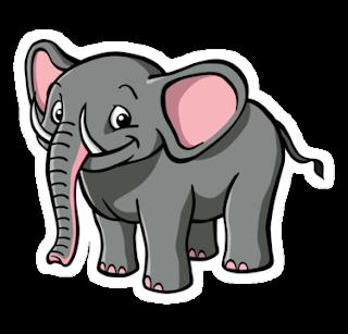 Cerita motivasi binatang gajah tetaplah gajah, bukan badak kisahinspiratifnet