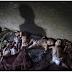 Bertapa Sadisnya Rumah Anak Buangan Di China
