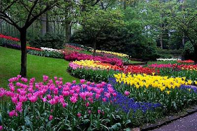 Berikut dibawah ini kita akan melihat taman-taman bunga terindah di ...