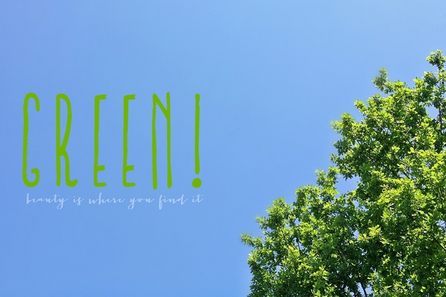 #BIWYFI fotoprojekt | april 2015 thema - green living | luziapimpinella.com