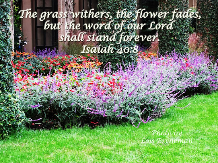 Purple Flowers - Isaiah 40:8