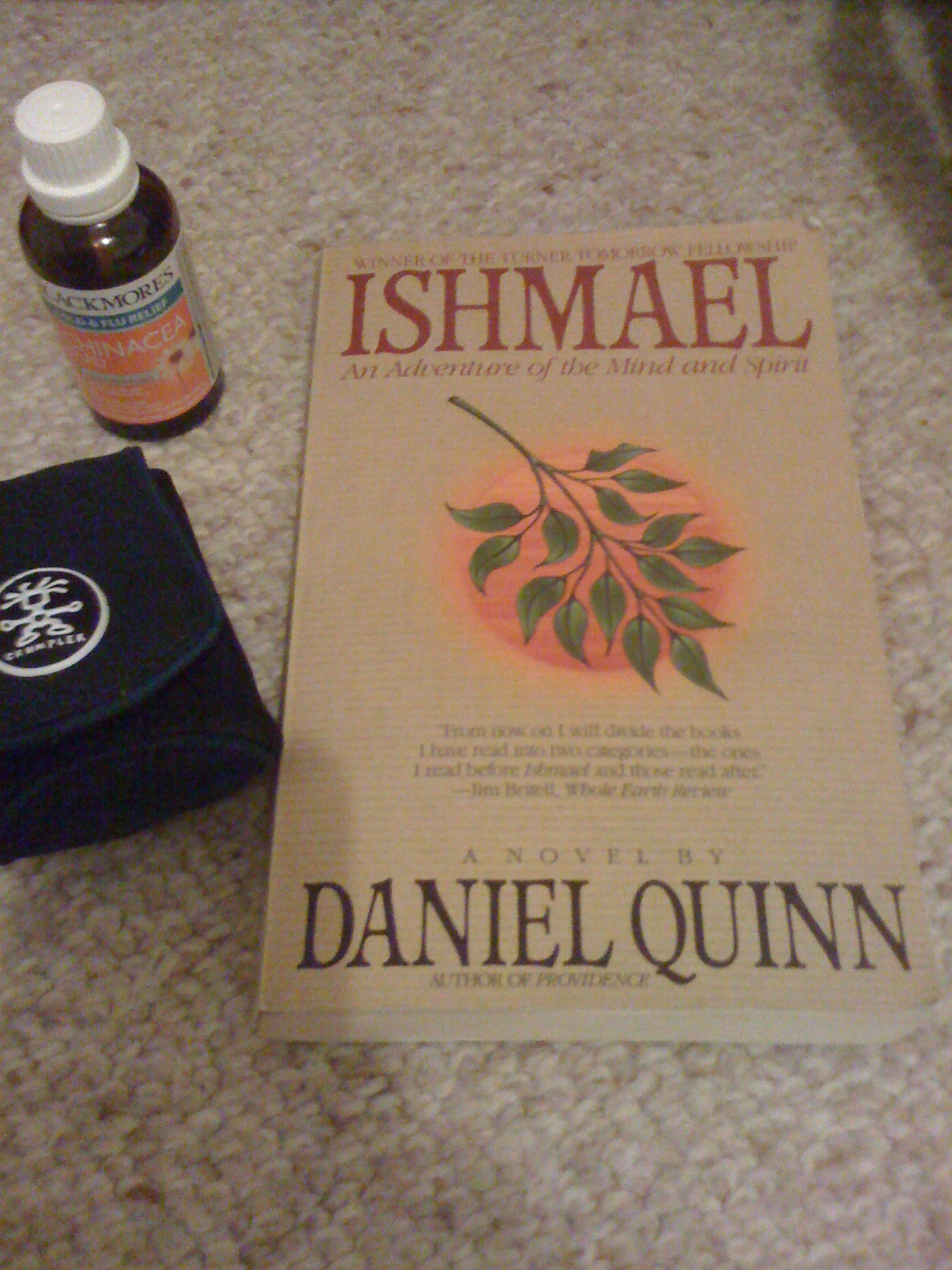 ishmael an adventure of the mind and spirit pdf