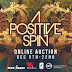 Today is the Launch of A Positive Spin, An Online Fundraising Auction