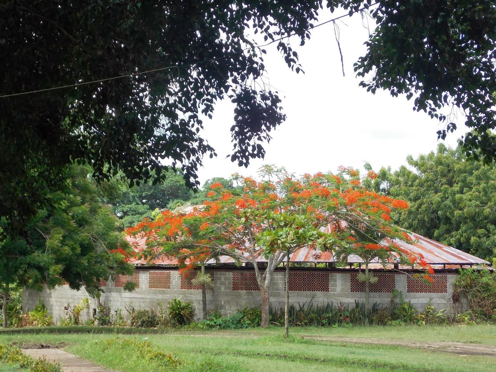 Establo ubicado en Juan Lopez Moca