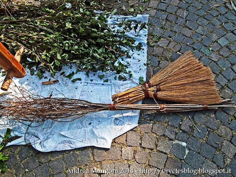 Tradizioni come realizzare una scopa di s ndane cornus for La scopa di saggina
