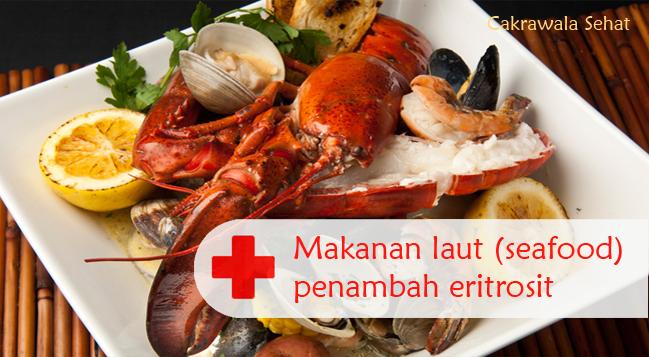 Makanan Laut Penambah Eritrosit