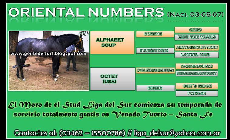 Oriental Numbers Padrillo