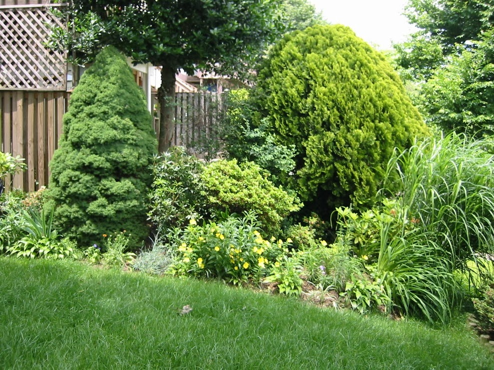 Views From The Garden Landscape Ideas For Privacy Between