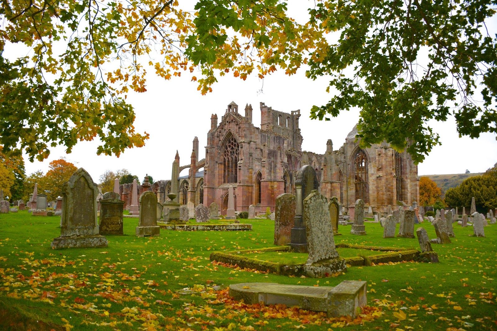 Melrose Abbey with fall colors