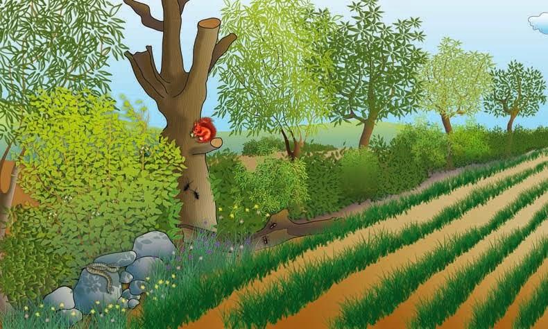 Poitou Charente illustration