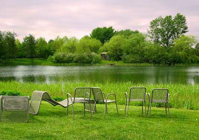 Visita el lago de los verdes prados - Lake and Nature - Vista espléndida para disfrutar