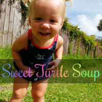 http://sweet-turtle-soup.blogspot.com/