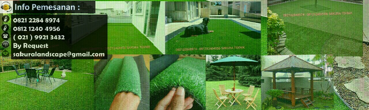 TUKANG TAMAN MURAH, RUMPUT VETIVER, TANAMAN HIAS, BIJI RUMPUT ( GRASS SEED )