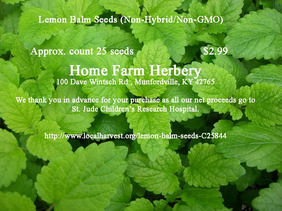 lemon-balm-25+ct.jpg