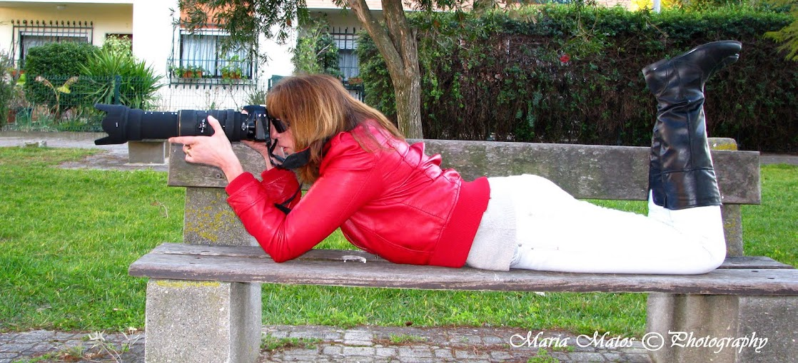 Fotos Maria Matos