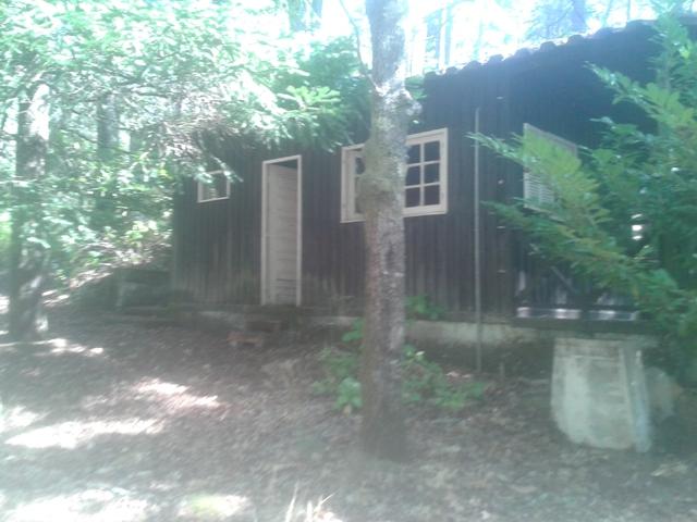Alojamento madeira