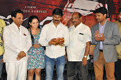 Meera Movie Audio release function photos-thumbnail-12