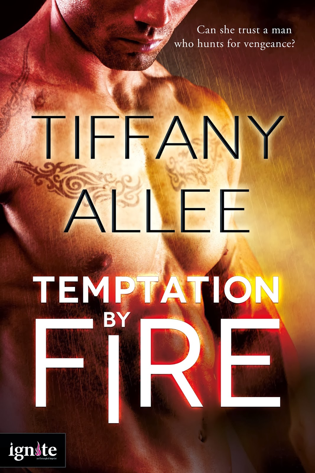 Blog Tour: Guest Post – Temptation by Fire by Tiffany Allee