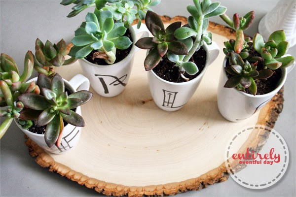 DIY Anthro knock off mug succulent garden. I love this idea for Fall! www.entirelyeventfulday.com #fall #anthropologie #succulents