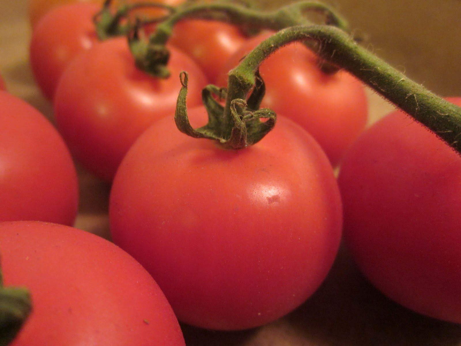 Culinary adventures with camilla dry roasted pearl tomatoes for Dry roasted tomatoes