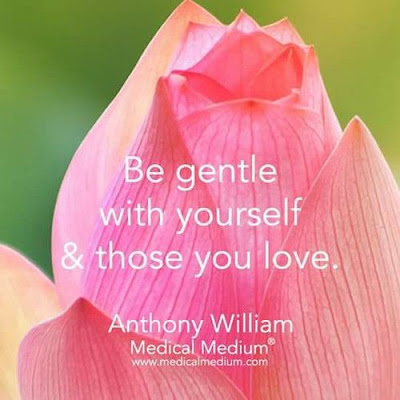 """Be gentle with yourself and those you love."" ~ Anthony William; Picture of a pink rose just starting to open. www.medicalmedium.com"