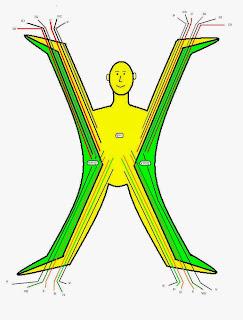 http://victorgaleron.blogspot.com.es/2015/11/equilibrado-del-cuerpo-con-acupuntura.html