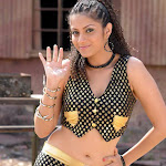 Sindhu Tulani Spicy Photo Gallery