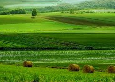 Pengertian Atau Definisi Pertanian Menurut Para Ahli Agriculture