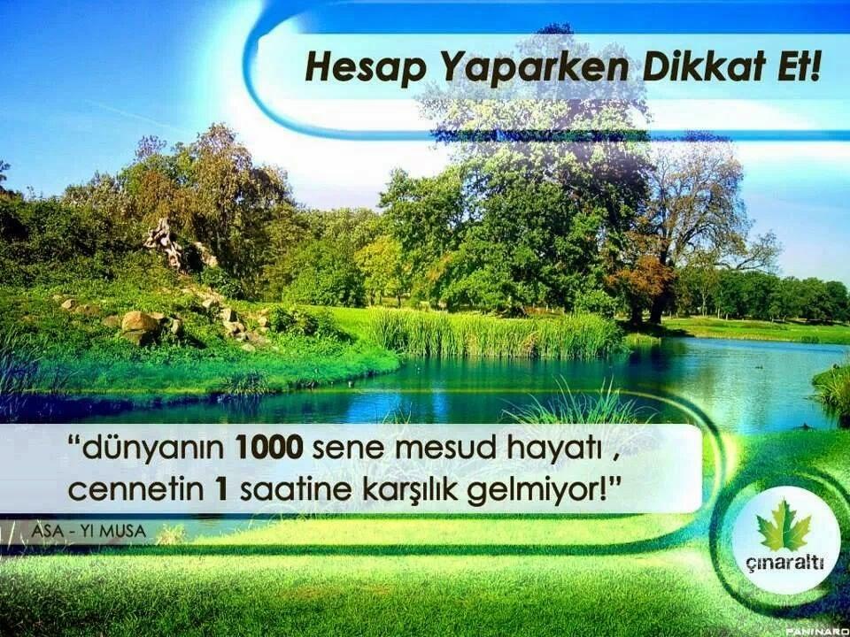 IMG 1014140204457325 -